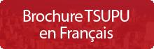 Brochure e programme TSUPU (pdf)